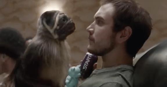 Puppy Monkey Baby and Mountain Dew Kickstart  Courtesy of Social Underground YouTube Channel https://www.youtube.com/watch?v=2nlfaqBGBsc